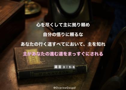 旧約 箴言 3章 5-6節